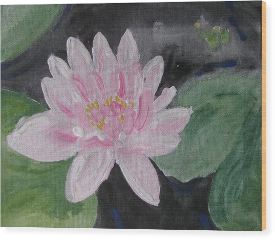 Light Pink Water Lily Wood Print by Vikram Singh