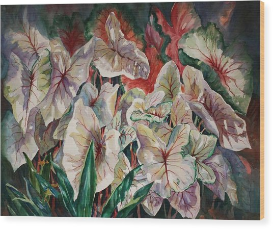 Light Play Caladiums Wood Print