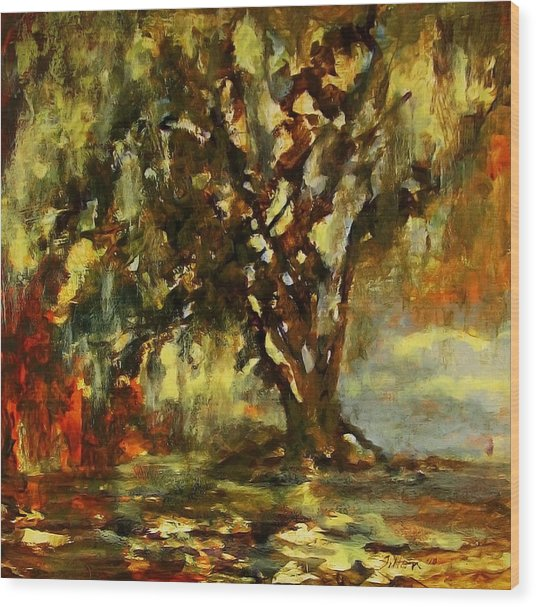 Light Through The Moss Tree Landscape Painting Wood Print