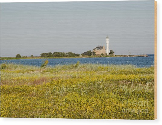 Lighthouse At Yellow Coast Wood Print