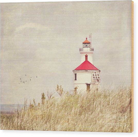 Lighthouse With Red Roof Wood Print