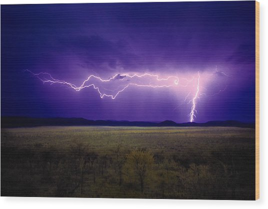 Lightning Serengeti Wood Print