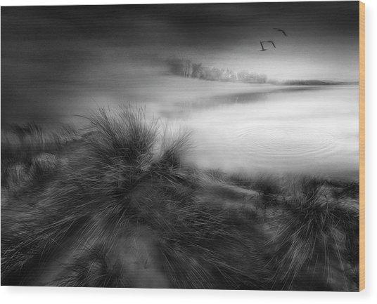 Like A Dream Wood Print by Fran Osuna