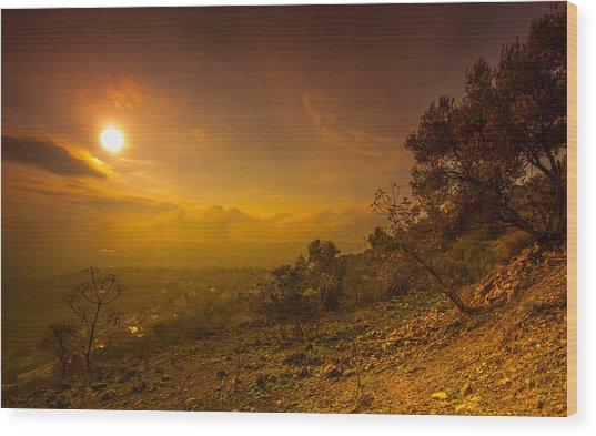 Like Martian View Wood Print