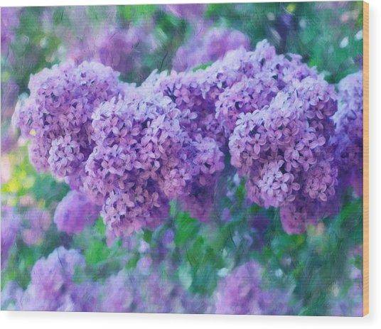 Lilac Cadenza Wood Print