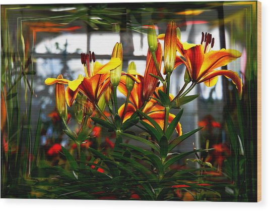 Lilium Wood Print by Nigel Watts