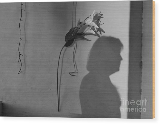 Lily And Male Figure Shadow Wood Print