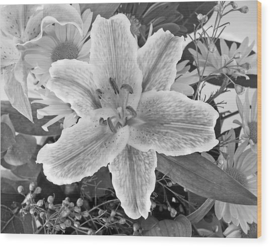 Lily Wood Print by Frank Winters