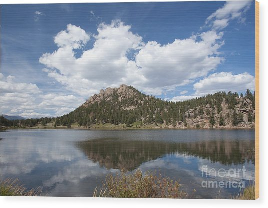 Lily Lake Relection Wood Print