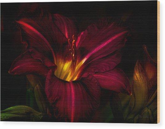Lily Number Nine Wood Print
