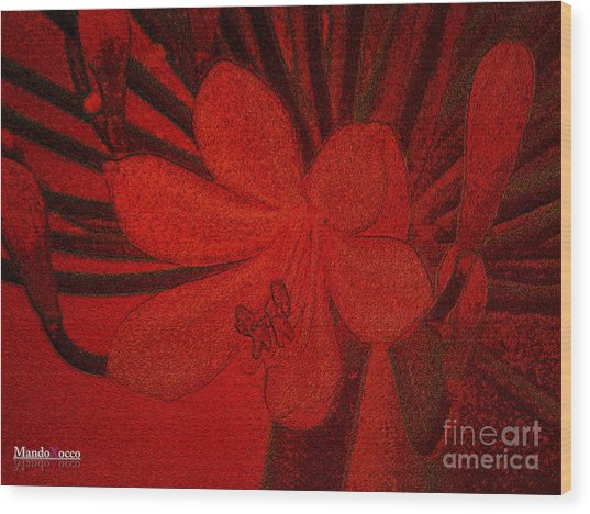 Lily Red Wood Print