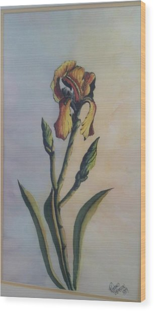 Lily Sold Wood Print