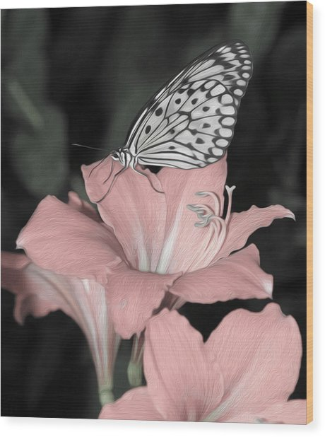 Lily With Butterly  Wood Print