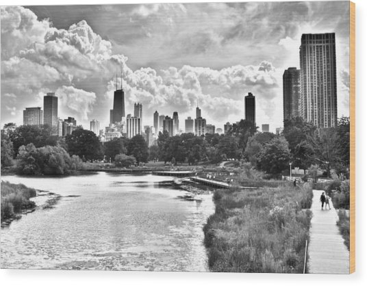 Lincoln Park Black And White Wood Print