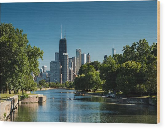 Lincoln Park Chicago Wood Print