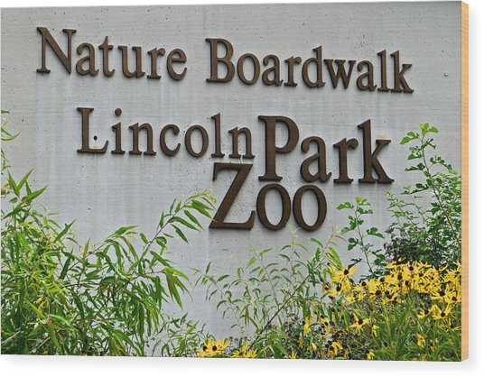 Lincoln Park Zoo Wood Print
