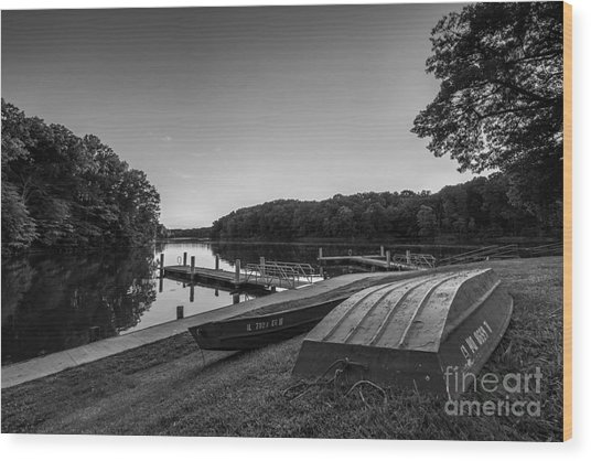 Lincoln Trail State Park Bw Wood Print