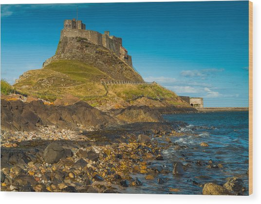 Lindisfarne Castle Wood Print by David Ross