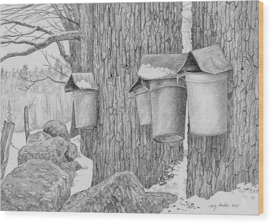 Line Of Sap Buckets Wood Print