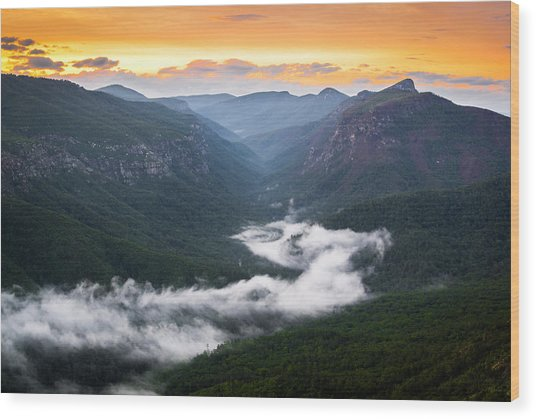 Linville River Of Fog Wood Print