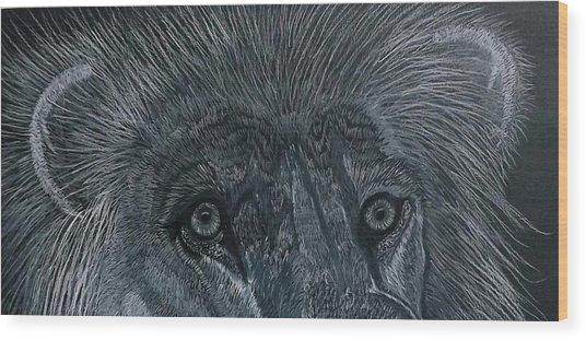 Lion Eyes  African King Detail Wood Print