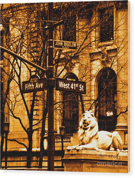 Lion On 5th Avenue Wood Print by Dan Hilsenrath
