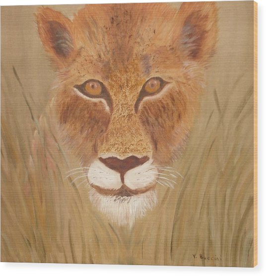 Lioness In Waiting Wood Print