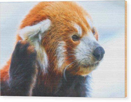 Listening Red Panda Wood Print