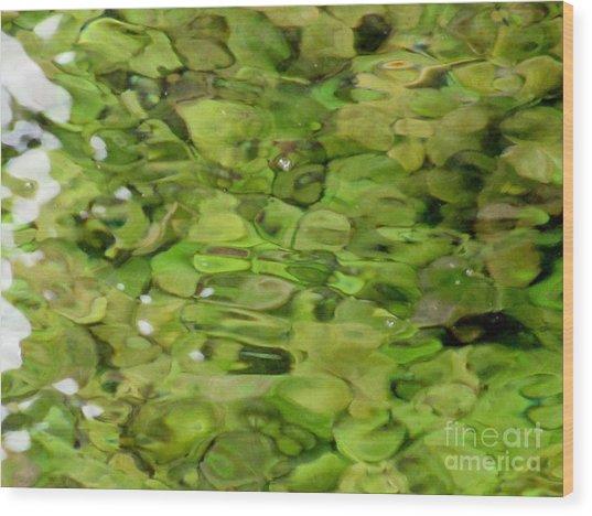 Lite Watery Green Wood Print