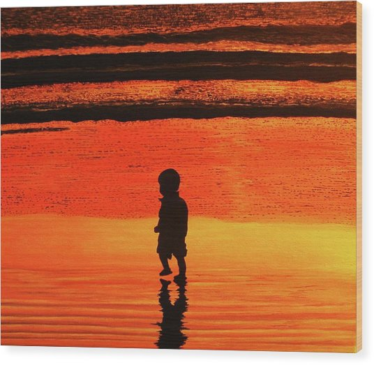 Little Boy At The Beach Wood Print
