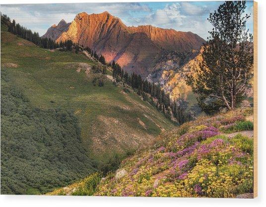 Little Cottonwood Canyon Near Alta Utah Wood Print