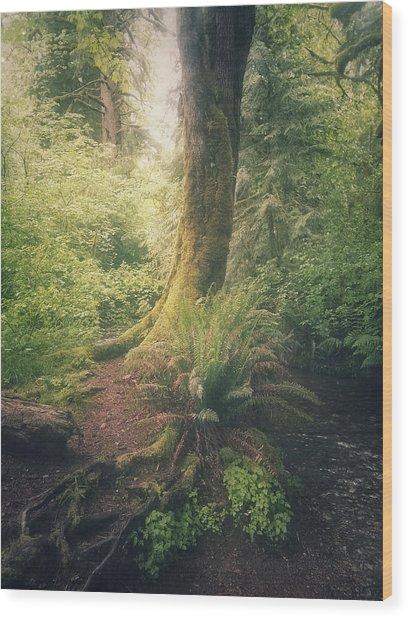 Little Creek Wood Print by Alexander Kunz