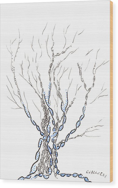 Little Dna Tree Wood Print