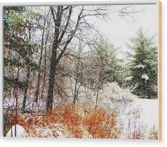 Little January  Wood Print by Dianne  Lacourciere