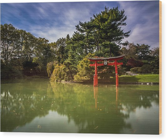 Little Japan Wood Print by Johnny Lam