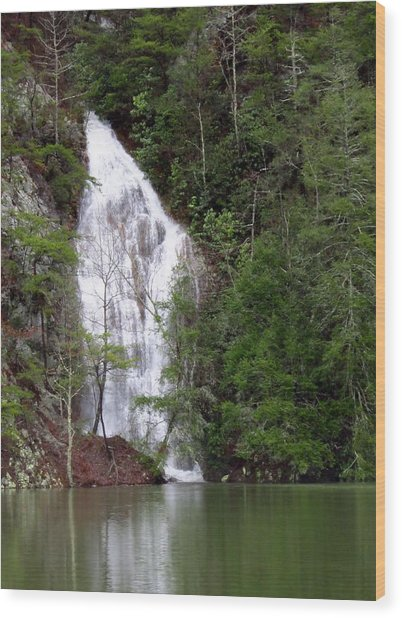 Little Laurel Branch Falls Wood Print