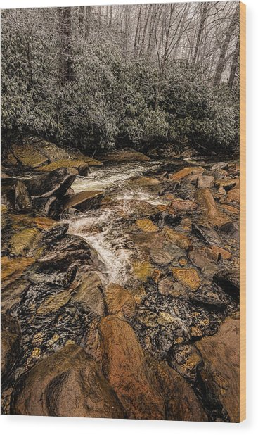 Little Pidgeon River2 Wood Print by Tom  Reed