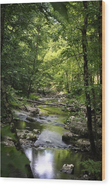 Little River Smoky Mountains Wood Print