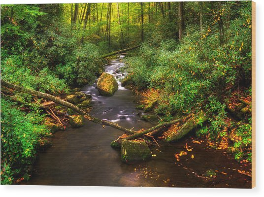 Little Santeetlah Creek Wood Print