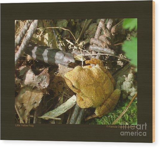 Little Yellow Frog Wood Print