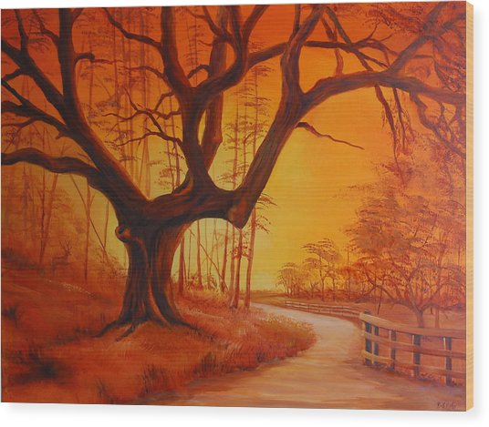 Live Oak At Sunset Wood Print by Rich Kuhn