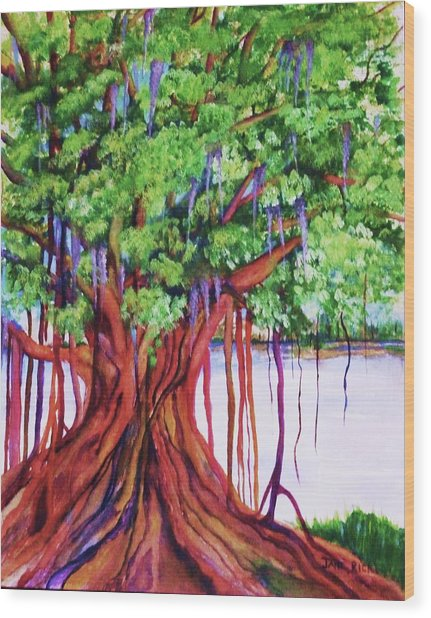 Living Banyan Tree Wood Print