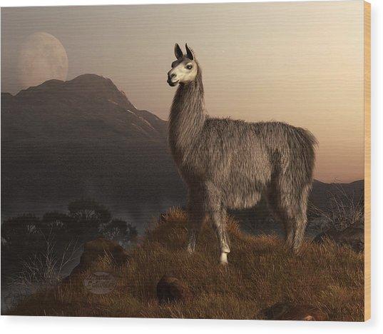 Llama Dawn Wood Print