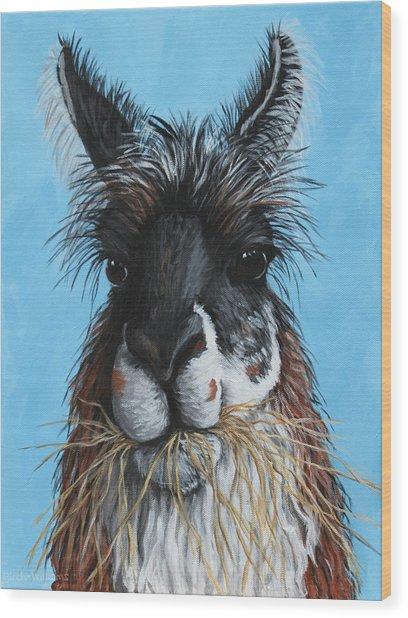 Llama Portrait Wood Print by Penny Birch-Williams