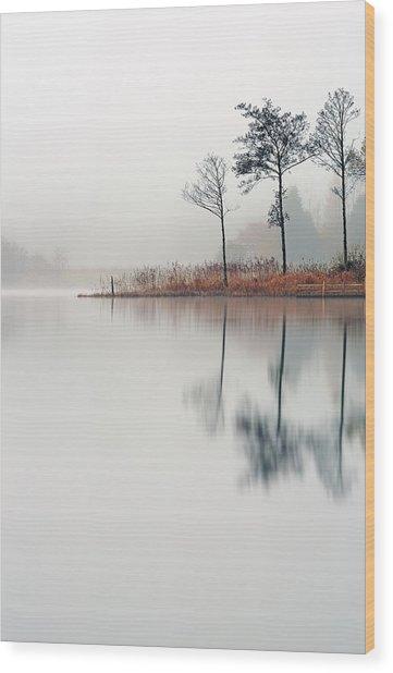 Loch Ard Reflections Wood Print