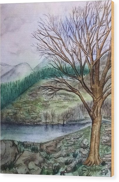 Loch Ard Stirling Overlooking Loch A'ghleannain Wood Print