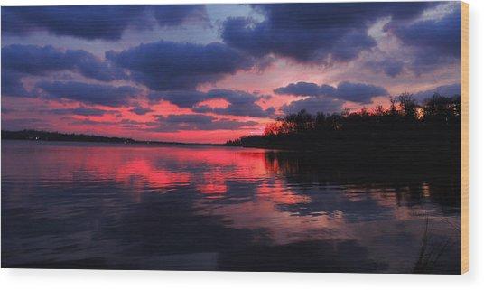 Locust Sunset Wood Print