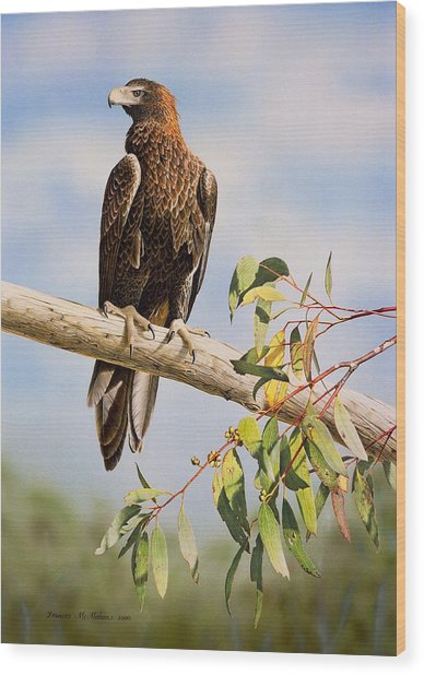 Lofty Visions - Wedge-tailed Eagle Wood Print