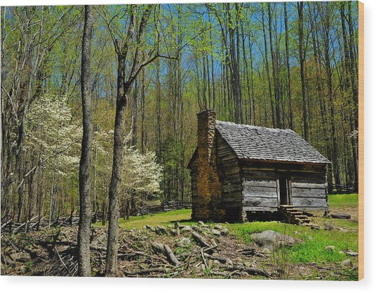 Log Cabin In The Smoky Mountain National Park Wood Print