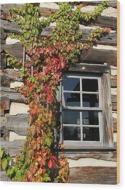 Log Cabin Ivy Wood Print